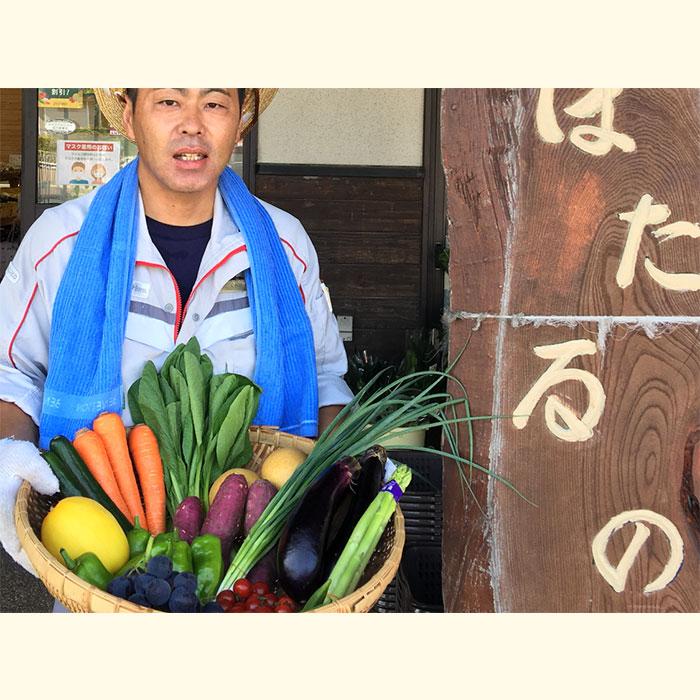宗像旬の野菜・果物セット(1回)