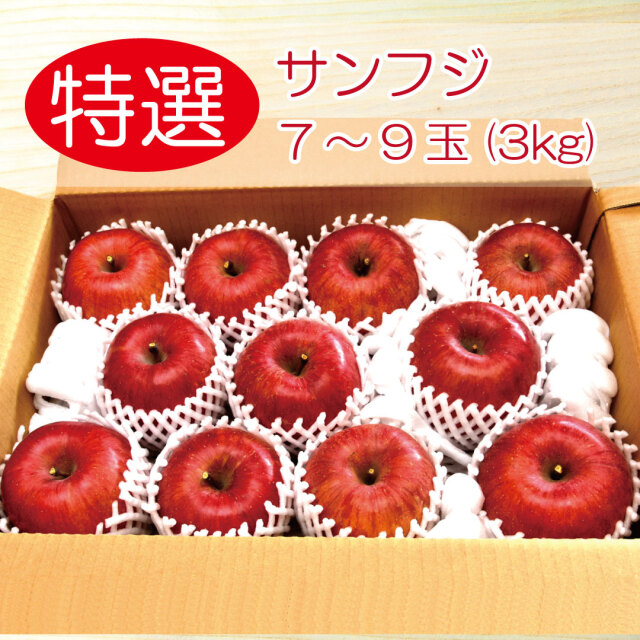 りんご サンフジ 特選3キロ 7~9玉