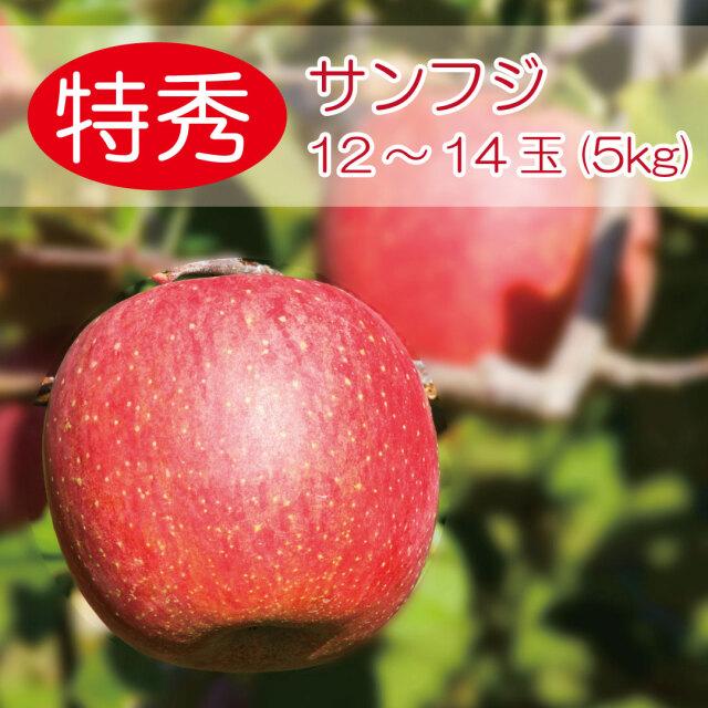 りんご サンフジ 特秀5キロ 12~14玉