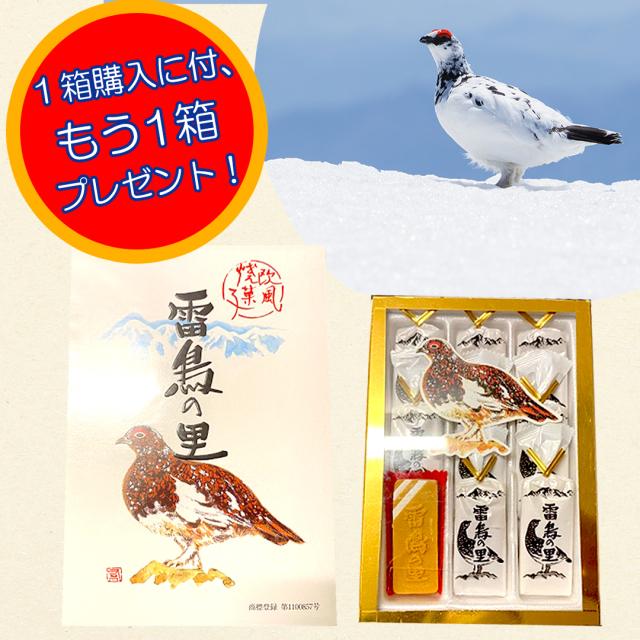 雷鳥の里 9枚入 【訳あり】【1箱購入でもう1箱プレゼント】