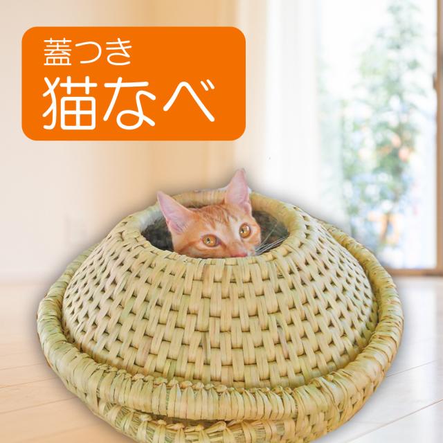 【職人が丁寧に制作】 猫なべ【ご家族の猫ちゃんも嬉しい】