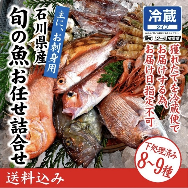 【処理済み】刺身用!旬の鮮魚詰合せ