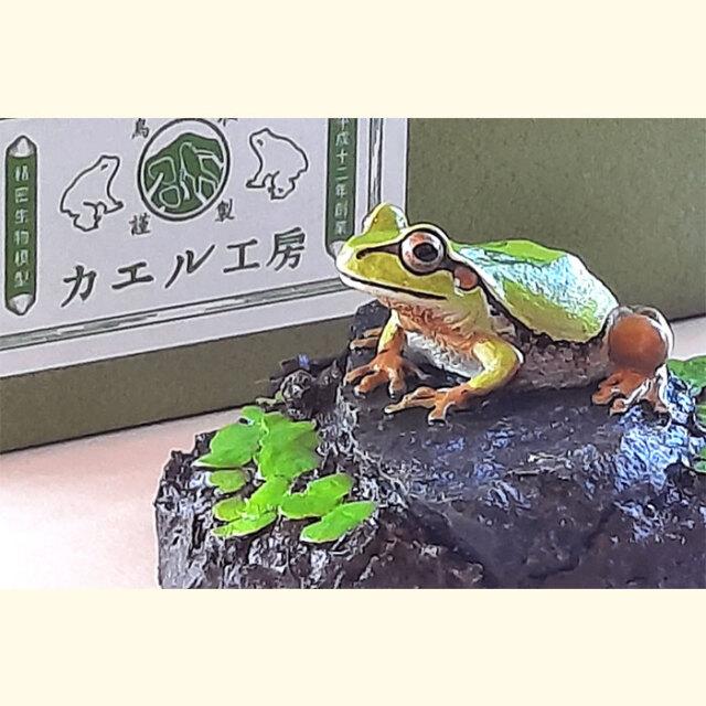 カエル工房「カエルの置物」