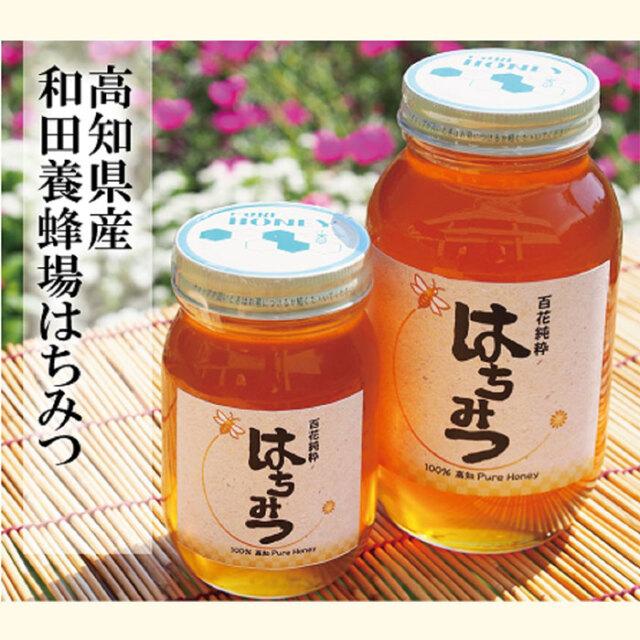 和田養蜂場純粋はちみつ600g