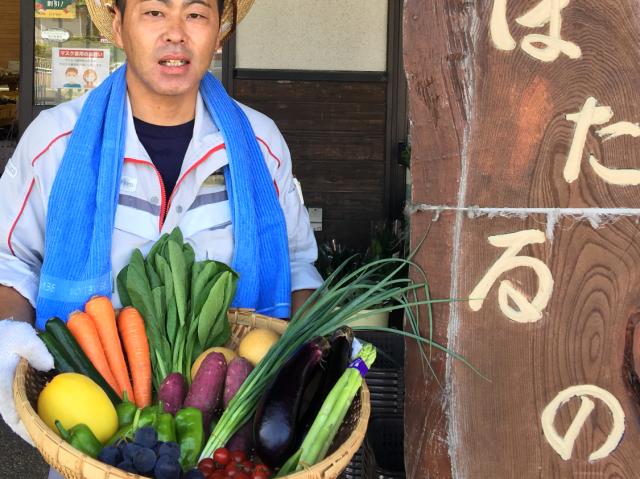 宗像旬の野菜・果物セット(6回コース)