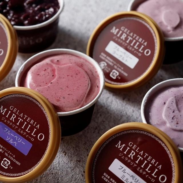 GELATERIA MIRTILLO ジェラート8個&冷凍オーガニックブルーベリーセット