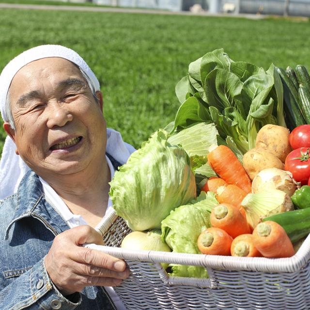 季節の野菜セットー1