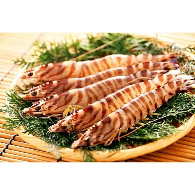 ユーグレナ 竹富島産冷凍くるま海老(養殖)500g/500g×2パック