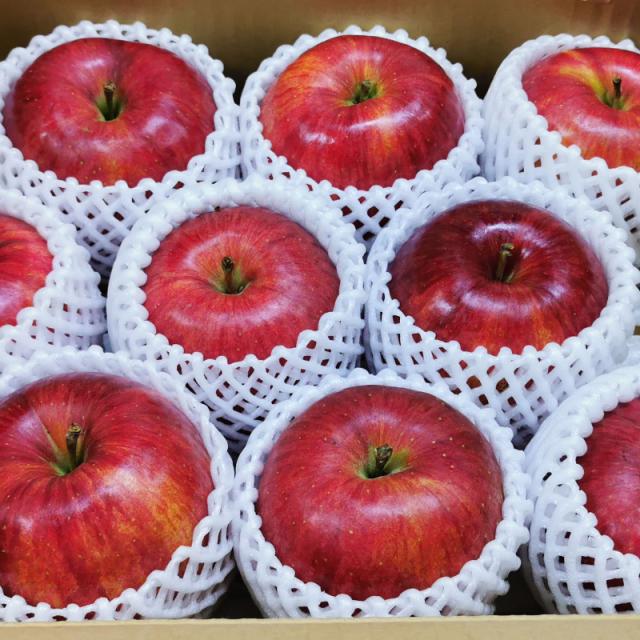 りんご画像3