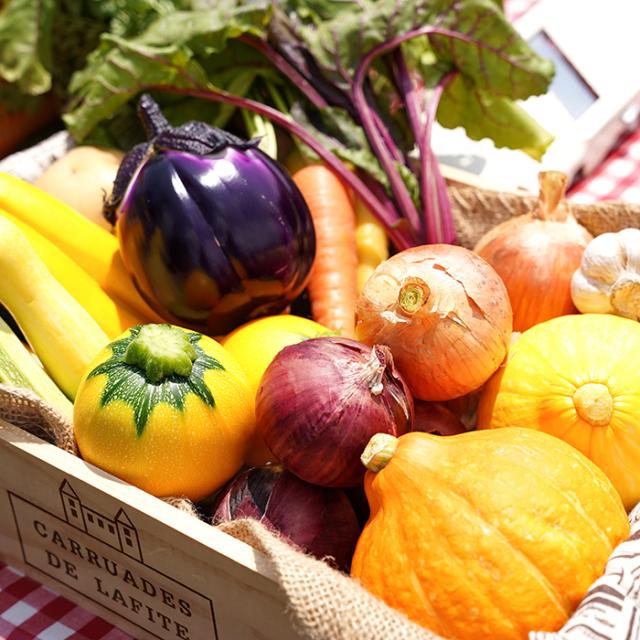 「ふく福ふぁーむ」 季節の元気な野菜セット詰合せ(約4kg~6kg)