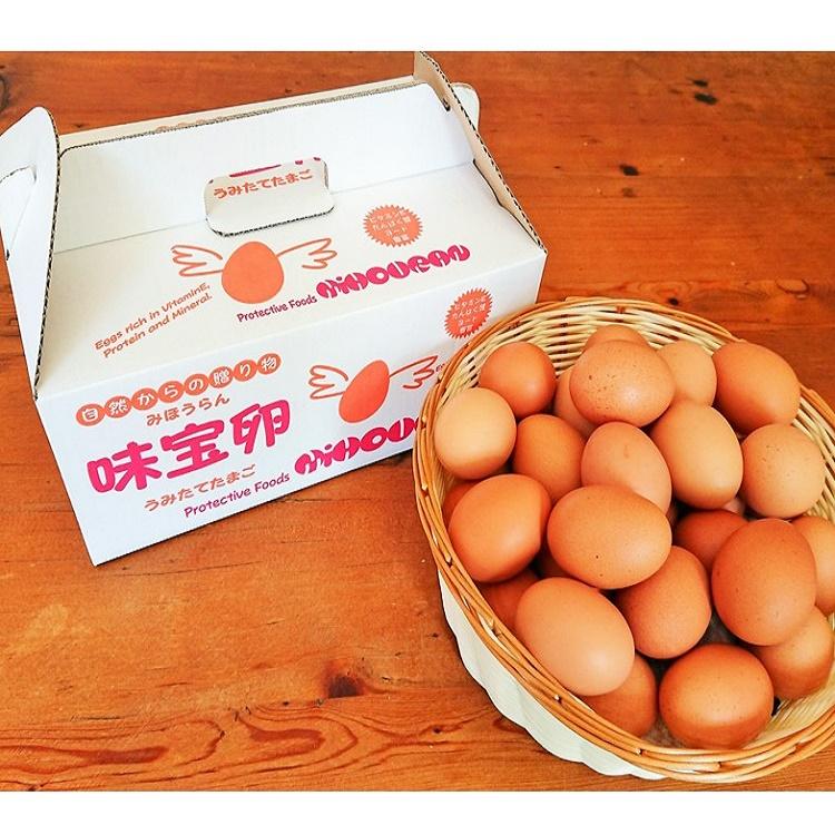 野上養鶏場卵背景茶