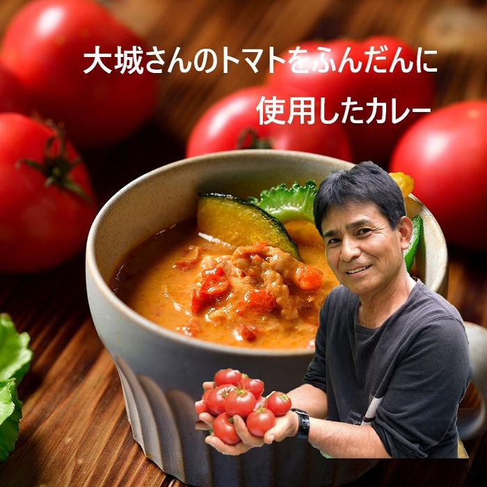 恩納の道の駅から【MEGUMI】トマトスープカレー5個セット