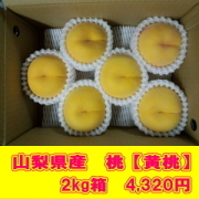 【山梨県産 桃 エッグピーチ】【黄 桃】(8月上旬頃~)【2kg箱】