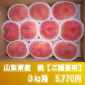 桜白桃(9月上中旬頃〜)【3kg箱】【ご贈答用】