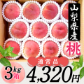桜白桃(9月上中旬頃〜)【3kg箱】【通常品)】
