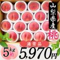 桜白桃(9月上中旬頃~)【5kg箱】【通常品】