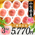 桜白桃(9月上中旬頃~)【3kg箱】【ご贈答用】