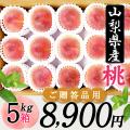 桜白桃(9月上中旬頃~)【5kg箱】【ご贈答用】