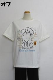 212-1012 オフショルダー半袖Tシャツ (綿92%、ポリウレ8%) サイズ:M・L・XL