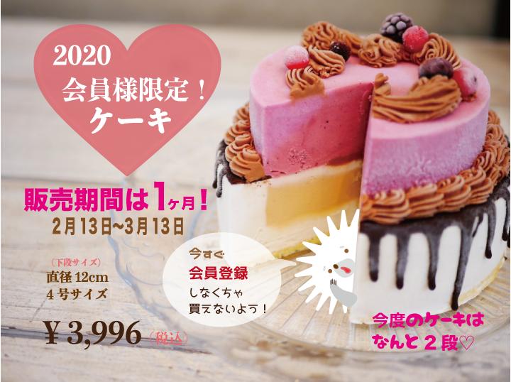 [28品目アレルゲン不使用]【2020会員様限定ケーキ】アイスクリーム 牛乳不使用 豆乳不使用 プレゼント ギフト 贈り物 お祝い  贈答用  アイスケーキ  ケーキ 100%植物性アイスクリーム
