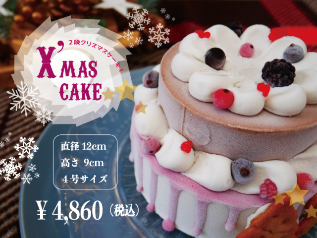 【X'mas cake(2段)】[28品目アレルゲン不使用ケーキ]アイスクリーム 牛乳不使用 豆乳不使用 プレゼント ギフト 贈り物 お祝い  贈答用  アイスケーキ  ケーキ 100%植物性アイスクリーム