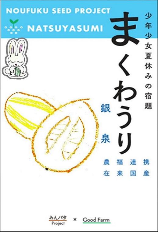 みんパタプロジェクト【まくわうり 銀泉胡瓜】
