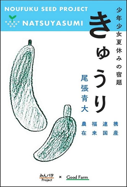 みんパタプロジェクト【青大胡瓜 あおだいきゅうり】