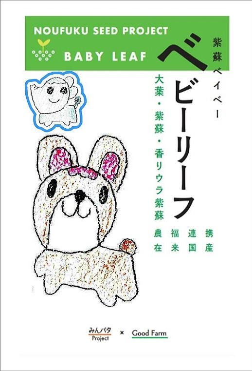 みんパタプロジェクト【紫蘇ベイベー ベビーリーフ】