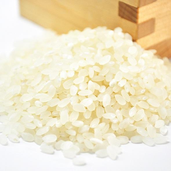 比布町・杉山さんの特別栽培米 白米 5kg