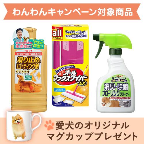 滑り止め&ワイパー+消臭・除菌セット