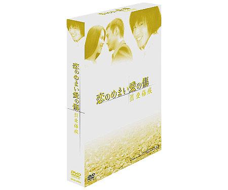 恋のめまい愛の傷~烈愛傷痕DVD-BOX (全3話+特典映像)
