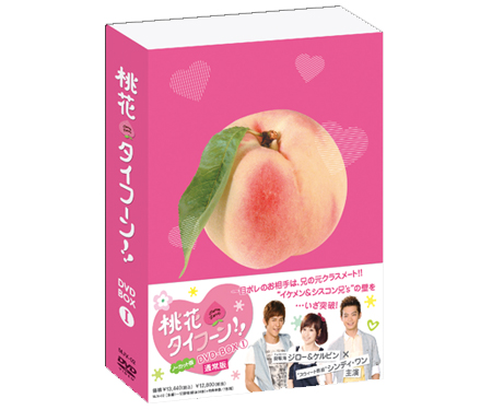 【50%OFFキャンペーン中】桃花タイフーン!! ノーカット版DVD-BOX I