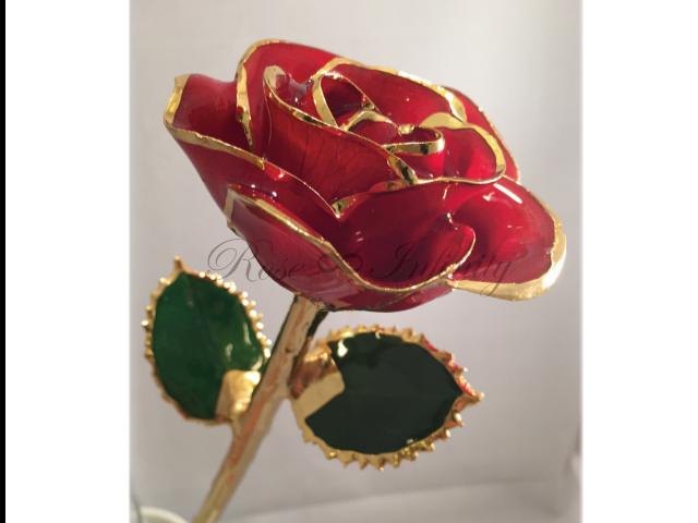 高級・特別なバラ フラワーギフト専門店 フラワーショップリズカ 24Kゴールドカラーローズ レッド