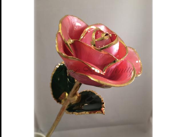 高級・特別なバラ フラワーギフト専門店 フラワーショップリズカ 24Kゴールドカラーローズ ピンク