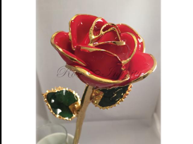 高級・特別なバラ フラワーギフト専門店 フラワーショップリズカ 24Kゴールドカラーローズ レッド&クリーム