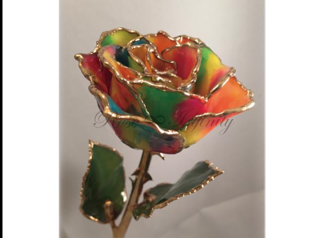 高級・特別なバラ フラワーギフト専門店 フラワーショップリズカ 24Kゴールドミステリアスローズ レインボー