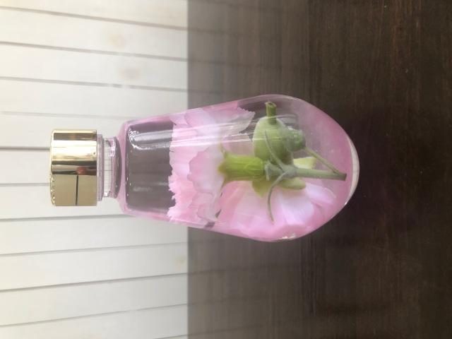 池袋 プリザーブドフラワー専門店 フラワーショップリズカ 母の日 カーネーション ハーバリウム 販売 店舗