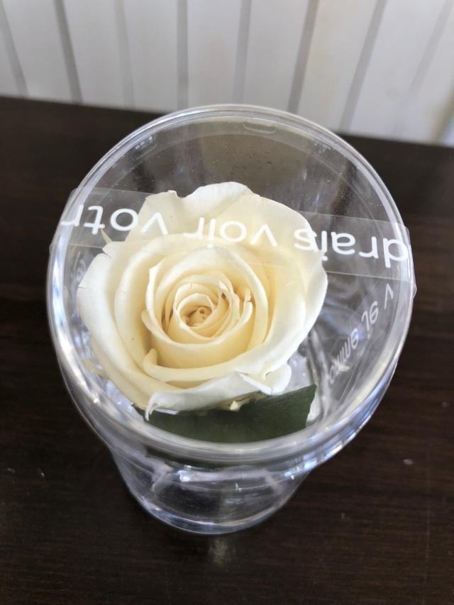 池袋 プリザーブドフラワー専門店 フラワーショップリズカ 可愛い1輪のプリザーブドフラワー ホワイト