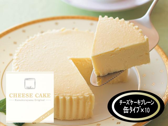 チーズケーキプレーン×10個
