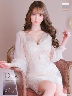 【Lサイズあり】シフォンスリーブ×刺繍レースタイトミニドレス(DE2369)