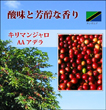 キリマンジャロ AA アデラ 【煎り豆】