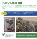 ヘカント農園 【生豆】
