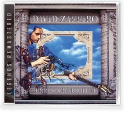 DAVID ZAFFIRO (US) / Surrender Absolute