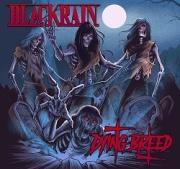 BLACK RAIN (France) / Dying Breed