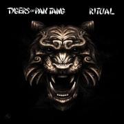 TYGERS OF PAN TANG (UK) / Ritual