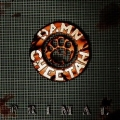 DAMN CHEETAH (US) / Primal