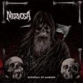 NERVOSA (Brazil) / Downfall Of Mankind