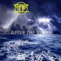 SIMMONZ (US) / After The Storm
