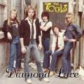 THE TOOLS (US) / Diamond Lace