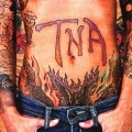 TNA(US/Tennessee) / TNA